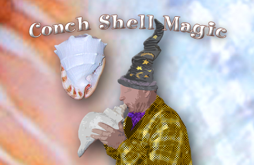 conch-shell-magic